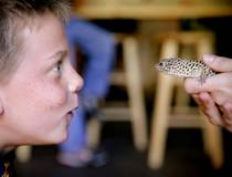 © Cheyenne Mountain Zoo